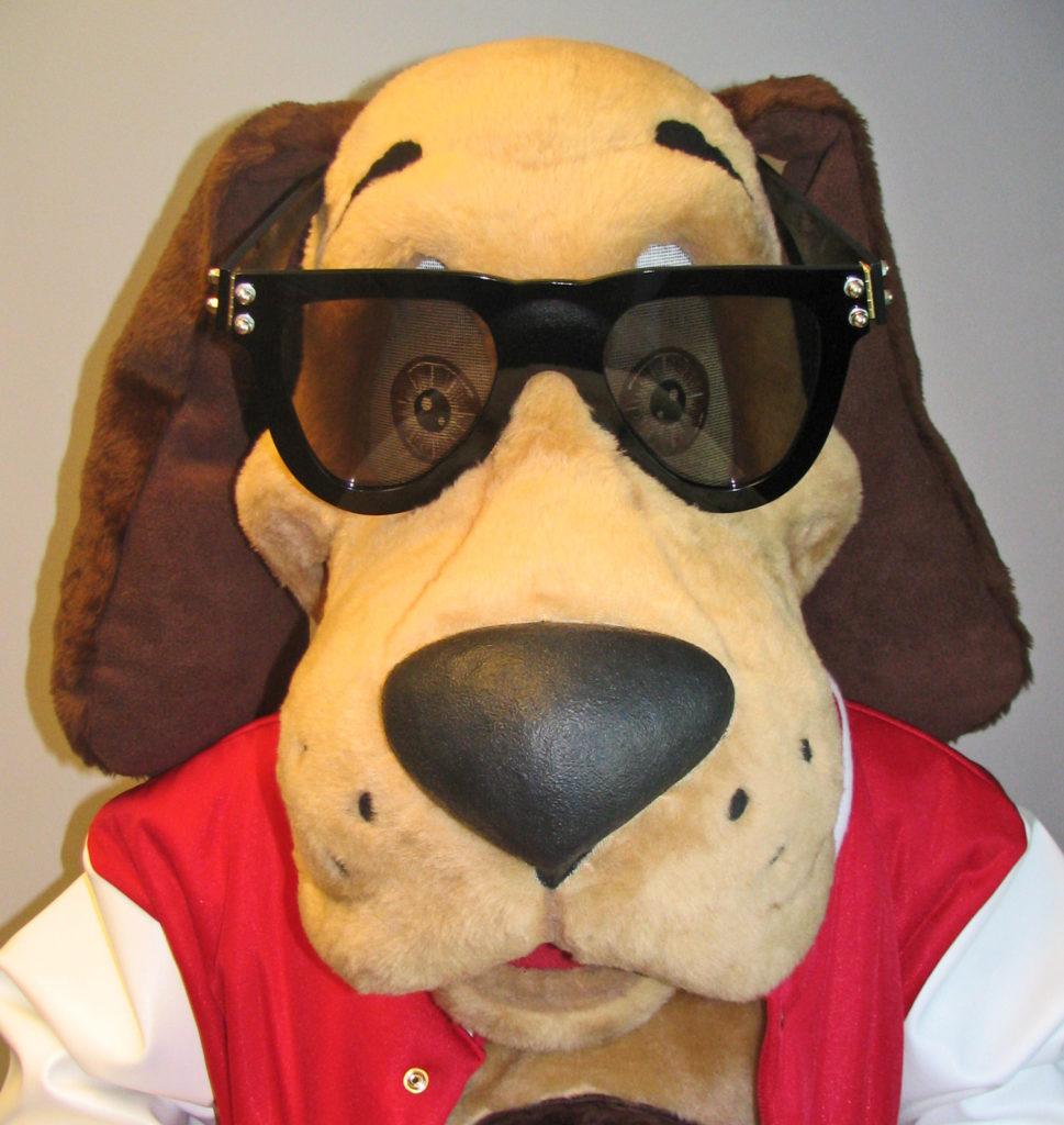WKAZ Dog