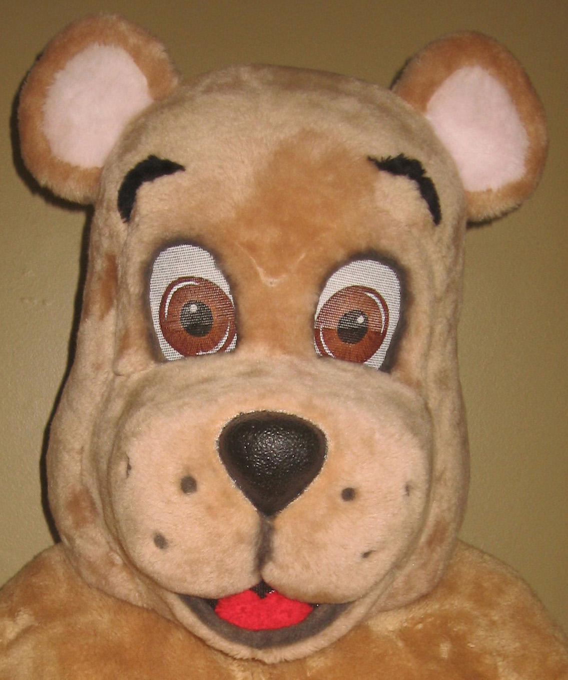 Bear Mascot Costumes Gallery
