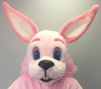 Bunnies Off-the-Shelf Mascot Costumes Gallery