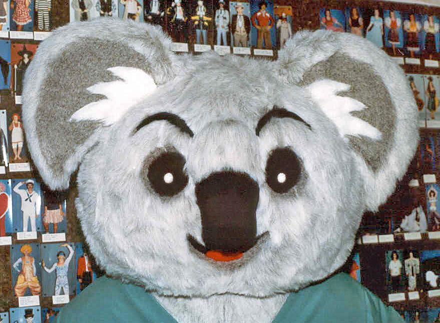 Cabby the Koala