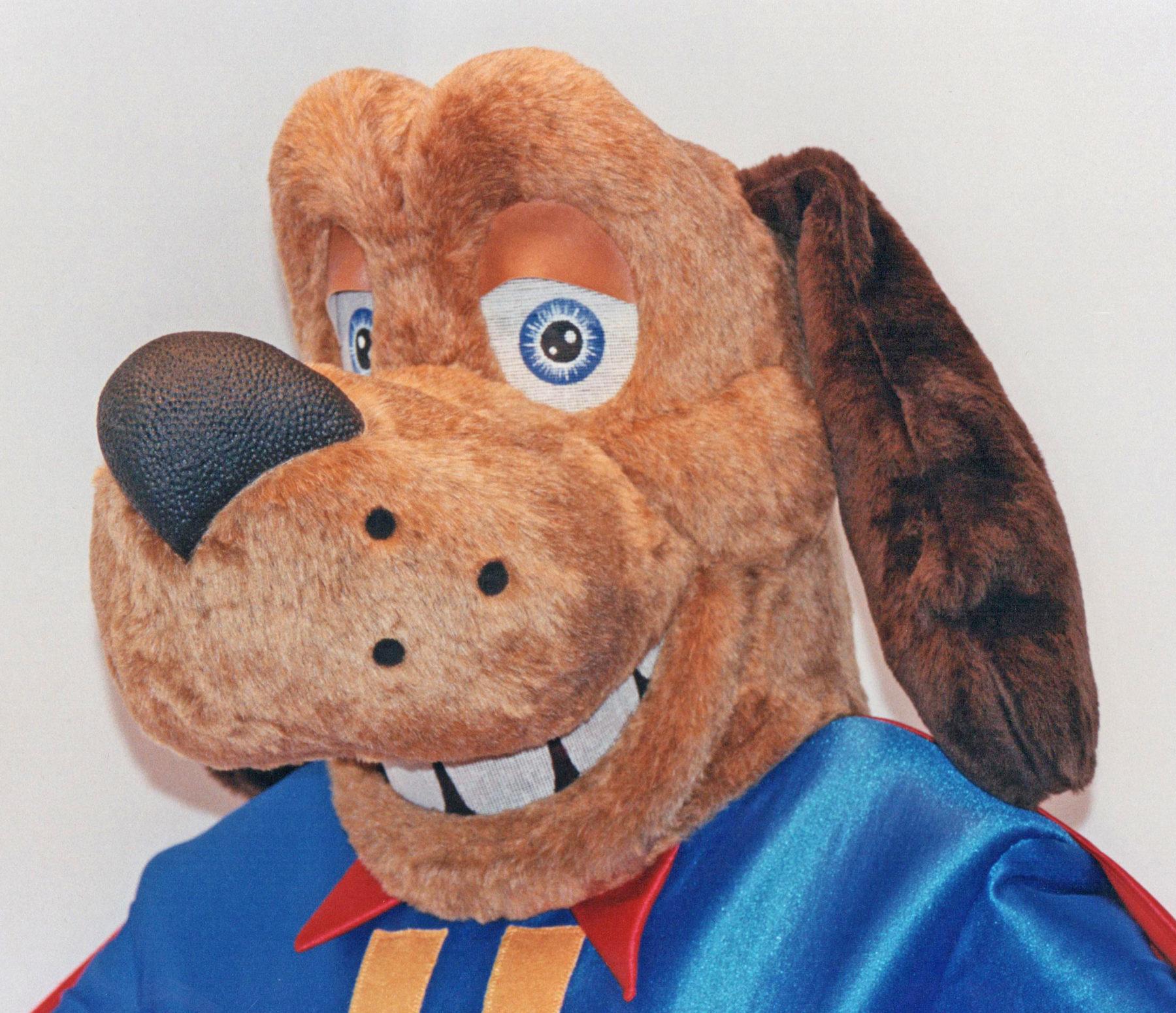 Dogs Custom Mascot Costumes Gallery