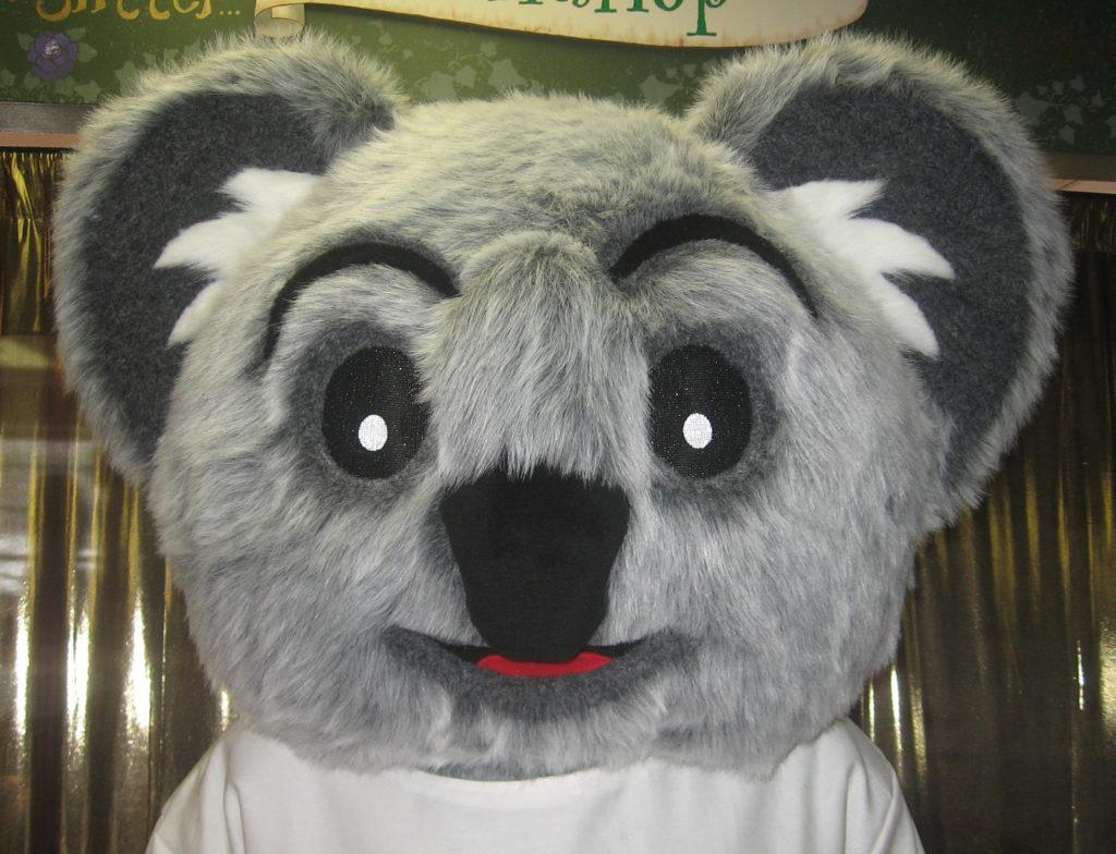 Koala Bear head