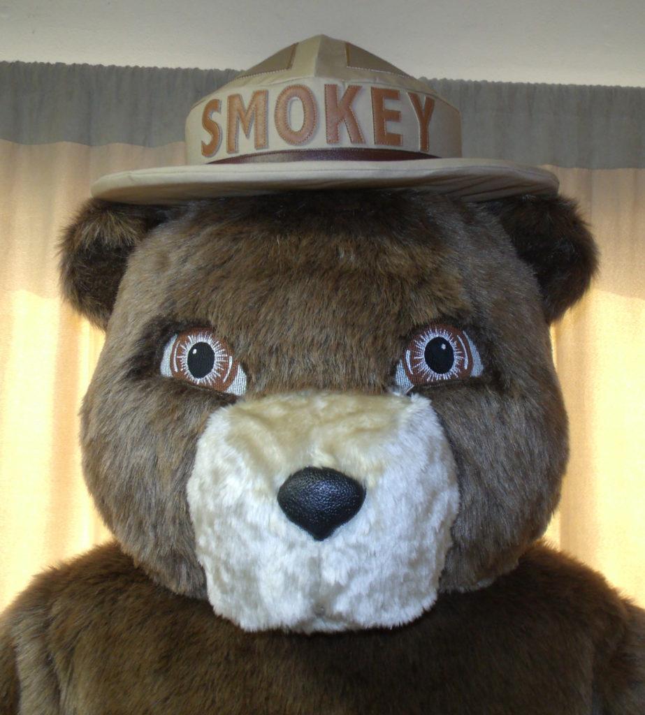 Smokey Bear head
