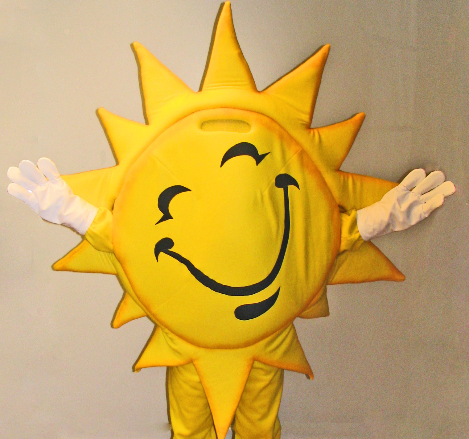 Suns & Stars Custom Mascot Costumes Gallery