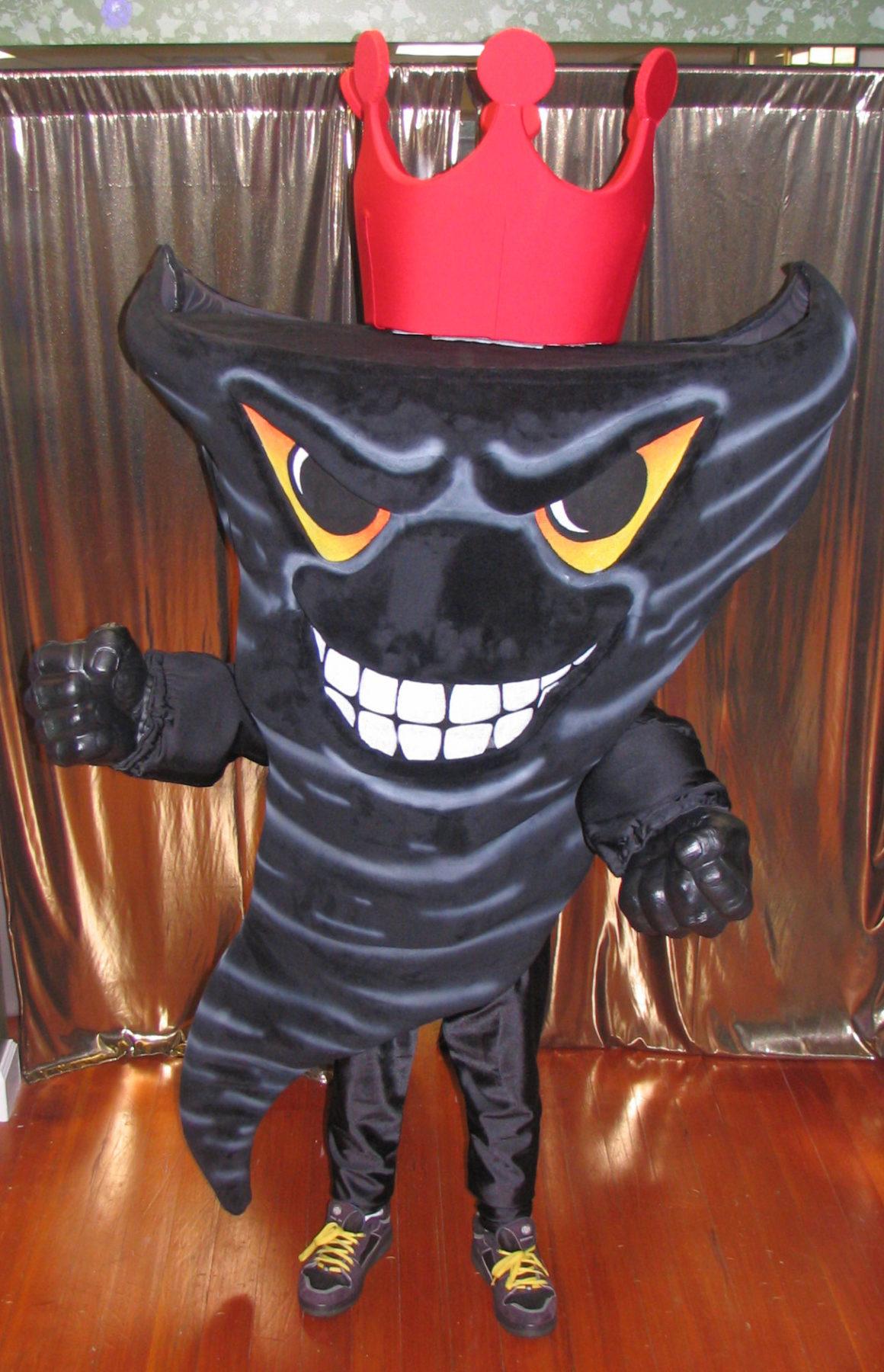 Tornadoes Custom Mascot Costumes Gallery